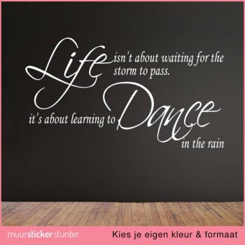 life-isnt-about-waiting-for-the-rain-to-pass-the-storm-its-aboiut-learning-to-dance-in-the-rain