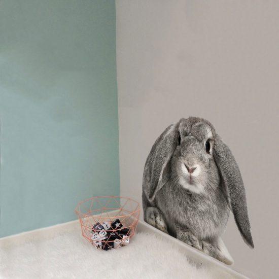 konijn-muursticker-kinderkamer-groot-klein-grijs-bos-dieren