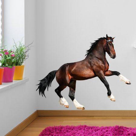 Paarden Sticker Muur.Muursticker Paard Galopperend Paard Sticker Kies Formaat V A 16 95
