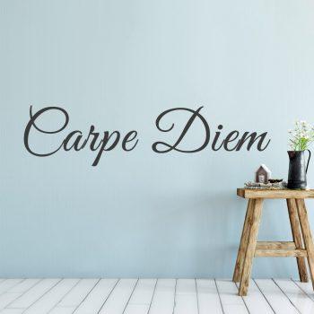 muursticker carpe diem muurtekst stickers wandstickers woonkamer slaapkamer