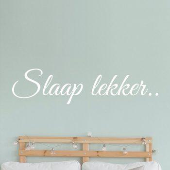 muursticker slaap lekker welterusten slaapkamer wandsticker