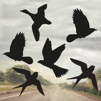 raamsticker vogelbescherming vogels zwart