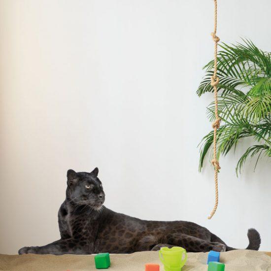 muursticker-panter-zwart-kinderkamer-liggend-ideeen-leeuw-tijger-stoer-leuk-inspiratie