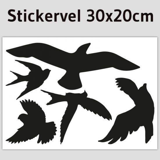 stickervel vogel set