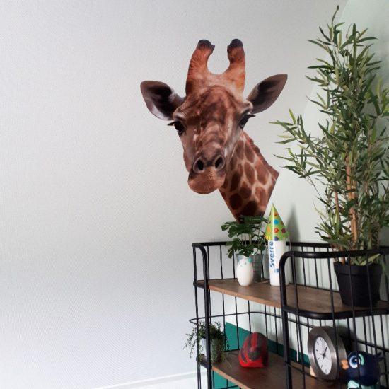 giraffe muursticker jungle