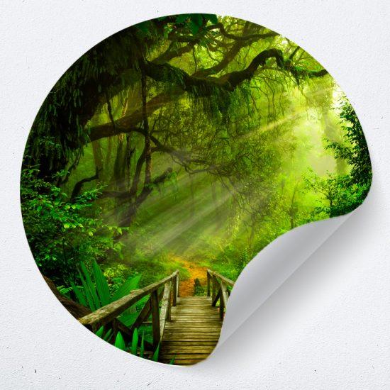 muurcirkel jungle behangcirkel bomen muurdecoratie accessoires woonkamer slaapkamer kinderkamer
