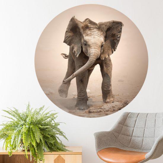 muurcirkel sticker muurdecoratie wandcirkel behangcirkel olifant baby accessoires