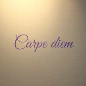 muursticker muurtekst sierlijk carpe leuk grappige teksten woonkamer slaapkamer