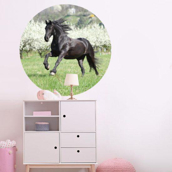 muursticker paard galloperend meisjeskamer meidenkamer
