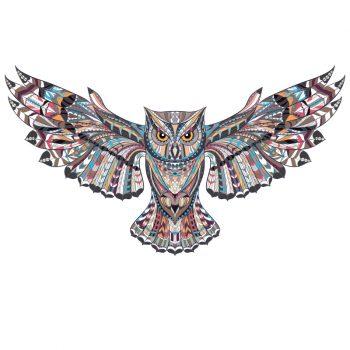 muursticker uil kleurrijk inspiratie kinderkamer dieren muurdecoratie wandsticker post zelfklevend