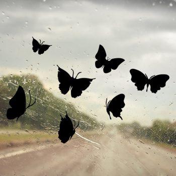 Muursticker vlinder vlinders raamsticker tuin inspiratie ideeën